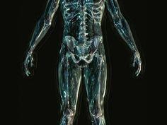 ardor anal y prostatitis