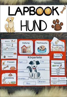 Package lapbook & index cards for the dog - teaching material in subject teaching Dog Breeds Little, Big Dog Breeds, Ticks On Dogs, School Equipment, Sense Of Sight, Guide Dog, Montessori Materials, German Language, Hunting Dogs