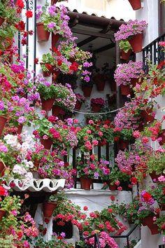wonderful garden for urban living. Courtyard Garden ~ Cordoba, Spain