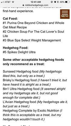 Hedgehog Food, Hedgehog Care, Beyond Chicken, Cat Food, Weight Management, Cat Lovers, Cat Feeding
