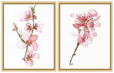Cherry Blossoms Flowers Set of 2 - 8x11 Art Print - Watercolor Paintings - Illustration- Floral Giclee  Print - Gift for Her- Nursery Decor