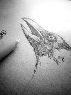 The Raven Drawing pen on paper
