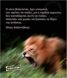 ! Smart Quotes, Greek Quotes, True Words, Looking Back, Wisdom, Greeks, Thoughts, Notes, Symbols