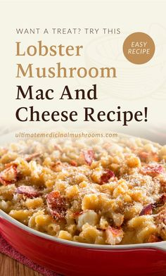 If you're preparing for an extra special dinner treat for friends and family, this Lobster Mushroom recipe is for you. It's a centerpiece dish that's guaranteed to be a hit at your party. Enjoy the classic delight of lobster and mushroom in one special dish. | Discover more healthy mushroom recipes at ultimatemedicinalmushrooms.com #cookingmushrooms #mushroomrecipes #medicinalmushrooms Chicken Mushroom Pasta, Vegan Mushroom Pasta, Lobster Mushroom, Mushroom Dish, Mushroom Recipes, Cheese Recipes, Sauce Recipes, Veggie Recipes, Pasta Recipes