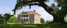 Drayton Hall - the best-preserved plantation