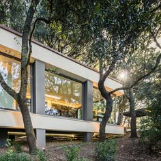 House in the Woods de Officina29 Architetti | Casas Unifamiliares
