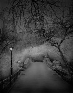 15+ Eerie Photos Of Central Park When There's No People, Taken By Insomniac Photographer | Bored Panda