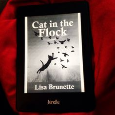 Here's my book on a Kindle!