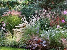 Lovely planting of grasses, Persicaria, daisies and Heuchera. Lovely planting of grasses, Persicaria, daisies and Heuchera. Landscape Design, Garden Design, Patio Design, Prairie Garden, Prairie Planting, Garden Cottage, Australian Garden, Heuchera, Garden Borders