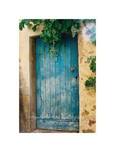 Provence blue door film photograph 8 x 12 inch  by LumiereDuMatin, $34.00