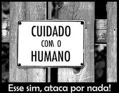 +q.verdadeiro!
