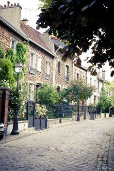 La Campagne à Paris. La rue Jules-Siegfried est une voie publique située dans le 20e arrondissement de Paris. Elle débute au 1 rue Irénée-Blanc et se termine au 29 rue Irénée-Blanc. La rue fait partie du lotissement la Campagne à Paris; elle est comme les autres rues de ce lotissement entièrement bordée de petites maisons de ville. 15w