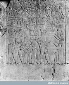 Bas-relief of circumcisions being performed, found in an Egyptian tomb built for Ankhmabor in Sakkara, Egypt. It dates back to around 2400 B.C.E.