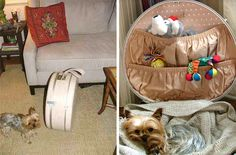 bijou kaleidoscope: Vintage Suitcase DIY Oh my gosh this is CUTE!! I want to make one for our groomer and her little friend!!