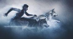 teen wolf wallpaPER - Google Search