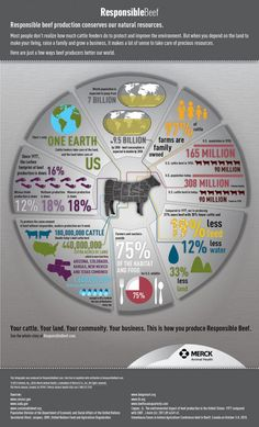 Check out www.responsiblebeef.com for more information about responsible beef production practices.