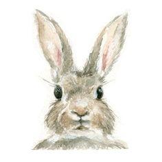 Aquarelle lapin lapin Print Bunny Print par jenhollowayart sur Etsy