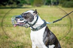 Wire Basket Dog Muzzle for Pitbull Activities #pitbull