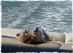 Boating in FL