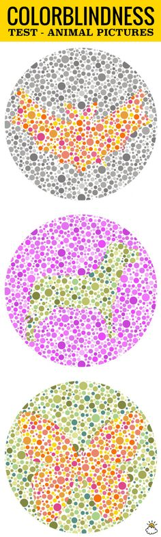 824 Best Color Blindness Test Images Reptiles Amphibians Snakes