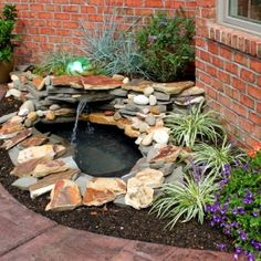 1000 images about flowers flower beds garden ponds for Diy backyard pond
