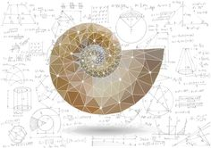 Mathematical Masterpieces: Making Art From Equations | DiscoverMagazine.com | gorgeous artistic projects that couldn't have been done without math and science