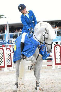 Equestrian Sport - Leviso Z