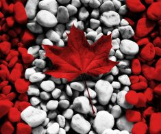 Canadian flag art