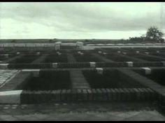 Dia de los muertos Joaquin Jorda, 1960