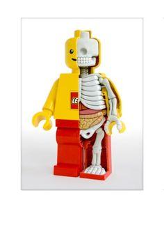 Cutaway anatomical Lego man print by artist Jason Freeny. Taken from the original sculpture. $31.00