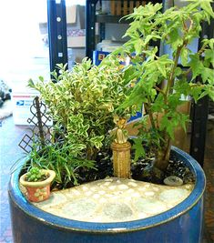 An indoor Miniature Garden in the Miniature Garden Office