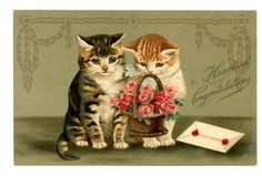 vintage cat postcard gorgeous Maguire tabby cats w basket roses & letter. Helena Maguire cats (w/o basket).