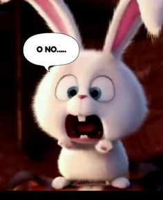 Cute Bunny Cartoon, Cute Cartoon Images, Cute Cartoon Wallpapers, Cute Disney Wallpaper, Wallpaper Iphone Cute, Cute Baby Girl Pictures, Cute Pictures, Simple Background Images, Beautiful Rabbit