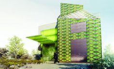 Sistema inovador usa algas para gerar energia enquanto filtra água