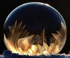 Frozen bubbles. Michelle Lynn Fritz, snaps the pictures in her back garden and only uses regular children's bubble solution, mixed with a couple of squirts of glycerine for added stability. To create...