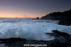 Point Lobos State Reserve pictures