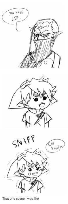 Stop being mean to poor Link, Impa