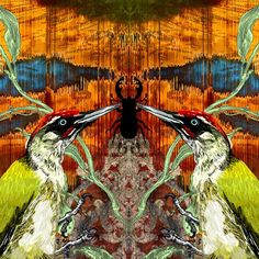 "258 Likes, 5 Comments - Timorous Beasties Official (@timorous_beasties) on Instagram: ""Predator vs Prey @fas_edinburgh #Birds #Woodpecker #StagBeetle #design #art #print #fineart…"""