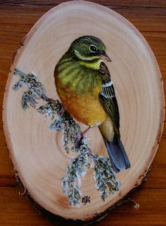 Fall Pictures, Pictures To Paint, Painting On Wood, Painting & Drawing, Rosemaling Pattern, Konica Minolta, Wood Circles, Rustic Art, Exotic Birds