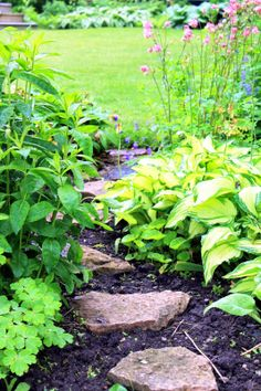 My Delights: garden path