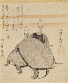 9 Key Terms You Should Know Before Seeing The Massive Hokusai ExhibitionTortues Kame zu Ère Kansei, an X (1798) Surimono 18,5 × 15,5 cm Signature : Hokusai Tokimasa ga Sceau : Shizōka Japon, collection particulière