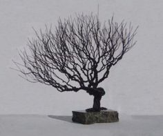 Wire Bonsai Tree Sculpture - Natural Style