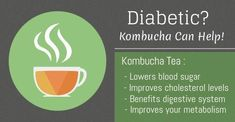 Kombucha tea keeps your blood sugar levels within a normal range, improves your metabolism and energy levels. Know more about Kombucha and how it is beneficial for diabetics. Cholesterol Guidelines, What Is Cholesterol, Lower Your Cholesterol, Cholesterol Levels, Kombucha Tea, Body Cells, Lower Blood Sugar, Diabetes Management, Nutrition Information