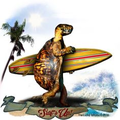 Surfing Turtle - Surf's Up! Tortoises, Surfs Up, Turtle, Surfing, Great Gifts, Graphic Design, Poster, Turtles, Viajes