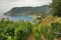 Walking Path between Monterosso Al Mare and Vernazza, Cinque Terre, Italy