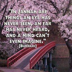 Jannah. Islam. Bukhari