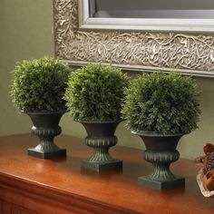 Cedar Ball Topiary - Set of 3 - Topiaries at Hayneedle