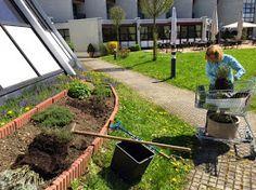 Im Frühling beginnen die Gartenarbeiten für unseren Kräutergarten Kraut, Photo And Video, Plants, Recovery, Places, Plant, Planets