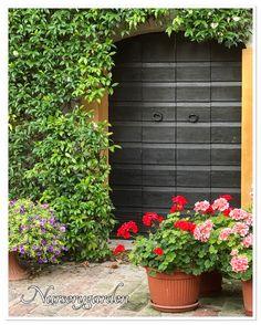 Garden,giardino,gerani,porte,gardening,countrychic,flowers