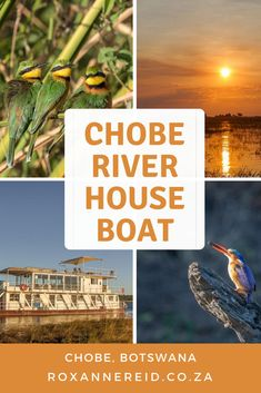 Houseboat on the Chobe River, Botswana #houseboat #Chobe #Botswana - Roxanne Reid All About Africa, Slow Travel, Virtual Tour, Places To Go, River, Rivers